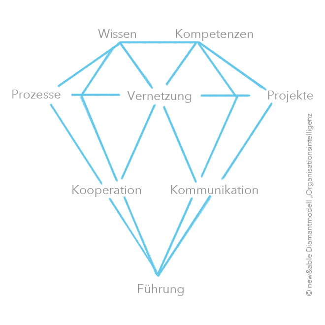 Diamantmodell der Organisationsintelligenz. Bild: copy new&able